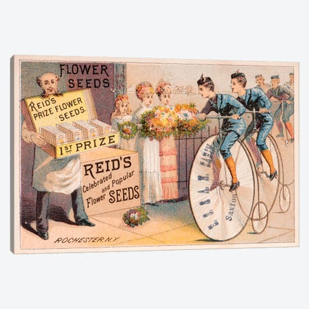 Reid's Prize Flower Seeds Advertisement Canvas Print #NYB21} by New York Botanical Garden Canvas Art Print