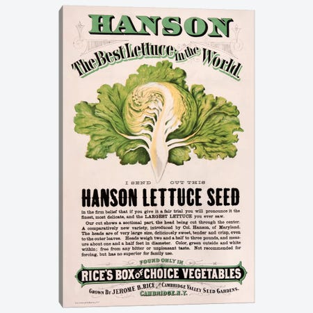 Rice's Hanson Lettuce Seed Advertisement Canvas Print #NYB22} by New York Botanical Garden Portfolio Canvas Art Print