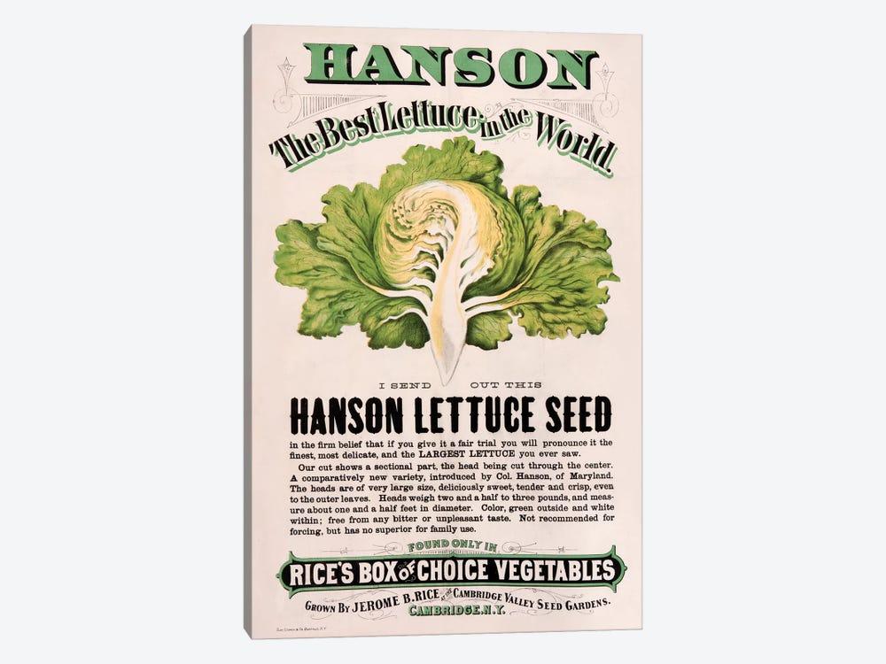 Rice's Hanson Lettuce Seed Advertisement by New York Botanical Garden Portfolio 1-piece Canvas Art Print