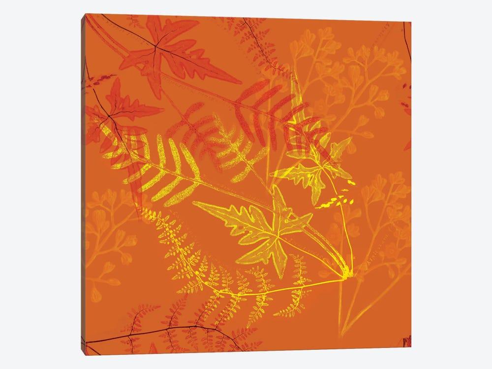 Ferns by New York Botanical Garden Portfolio 1-piece Art Print