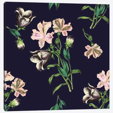 Pink Flowers On Dark Background Canvas Print #NYB40} by New York Botanical Garden Portfolio Art Print