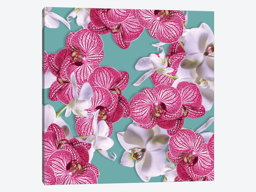 Photographic Orchids by New York Botanical Garden 1-piece Art Print