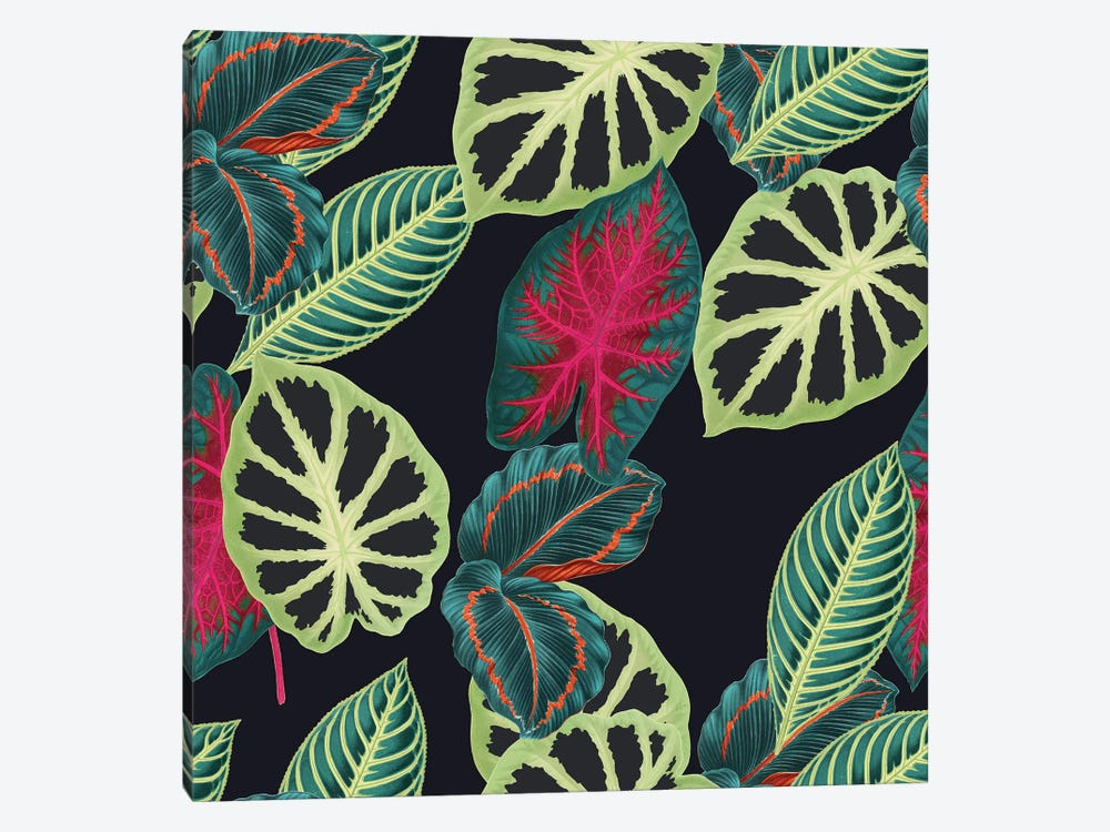 Tropical Leaves by New York Botanical Garden 1-piece Canvas Artwork