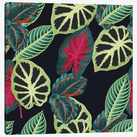 Tropical Leaves Canvas Print #NYB52} by New York Botanical Garden Portfolio Canvas Art
