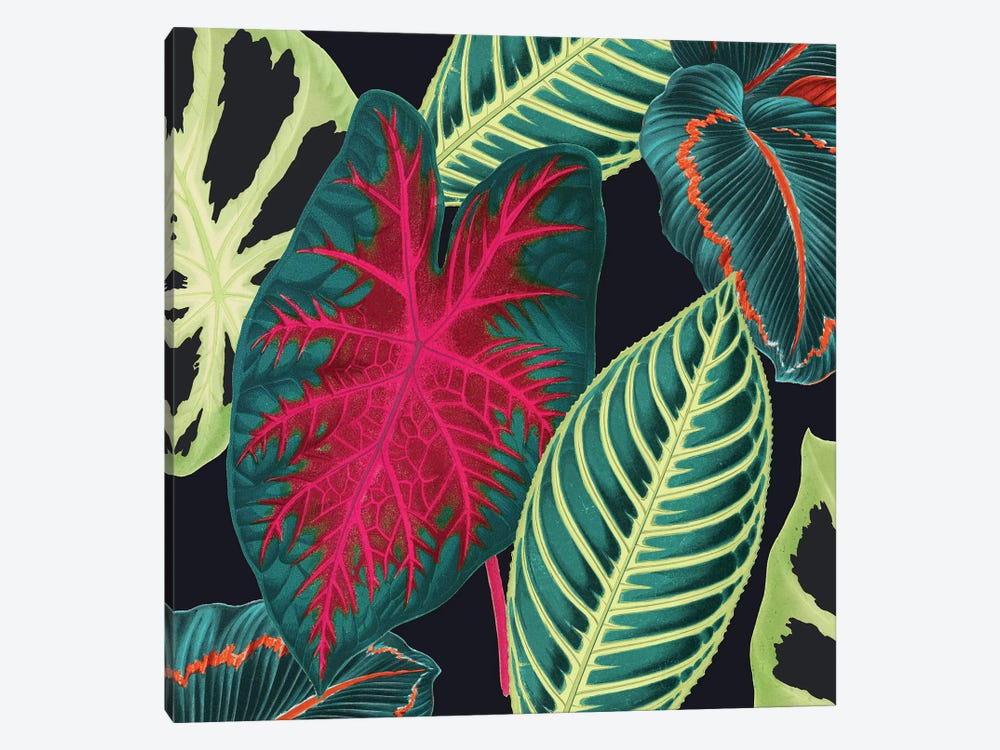 Tropical Leaves Crop by New York Botanical Garden 1-piece Canvas Print