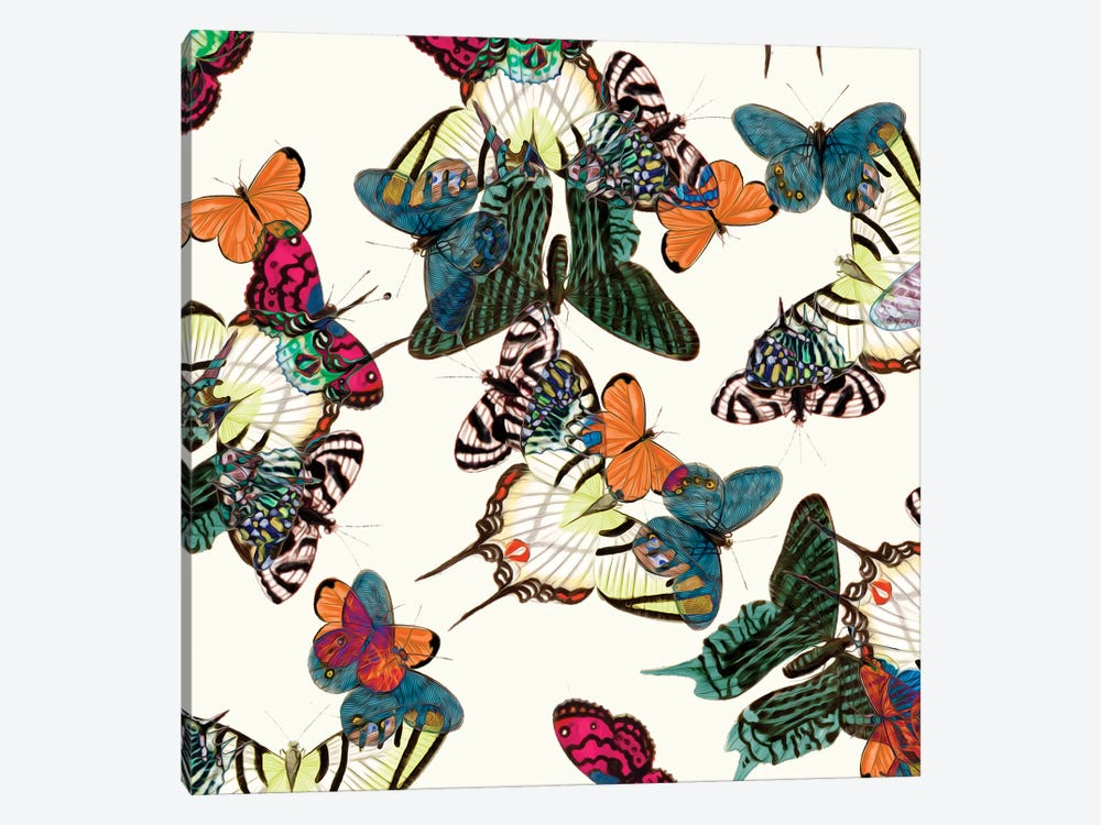 Varicolored Butterflies by New York Botanical Garden 1-piece Canvas Wall Art
