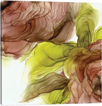 Peonies I Canvas Art Print