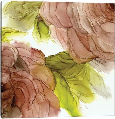 Peonies II Canvas Art Print