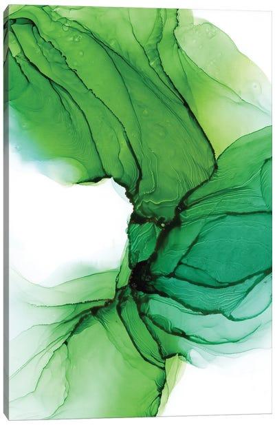 Сlover Canvas Art Print