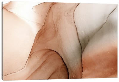 Canyon Canvas Art Print