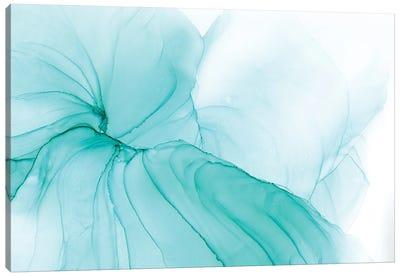 Snow Slide Canvas Art Print