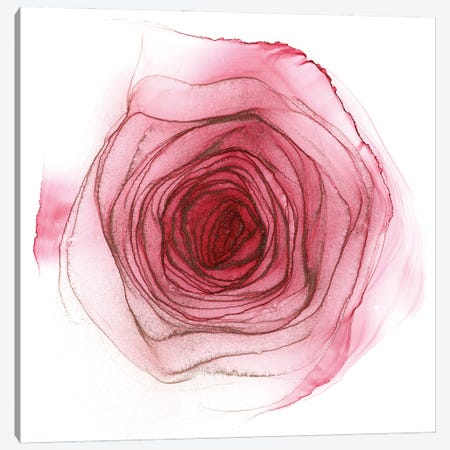Pink Rose Canvas Print #OAA59} by Monet & Manet Art Studio Canvas Art Print