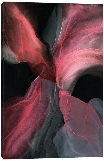 Explosive Canvas Art Print