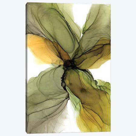 Olive Canvas Print #OAA9} by Monet & Manet Art Studio Canvas Print