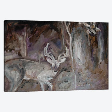 Nocturnal Animals I Canvas Print #OBA67} by Oleksandr Balbyshev Art Print