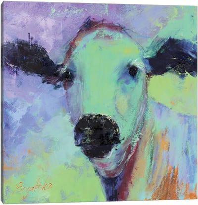 Bos Taurus Canvas Art Print