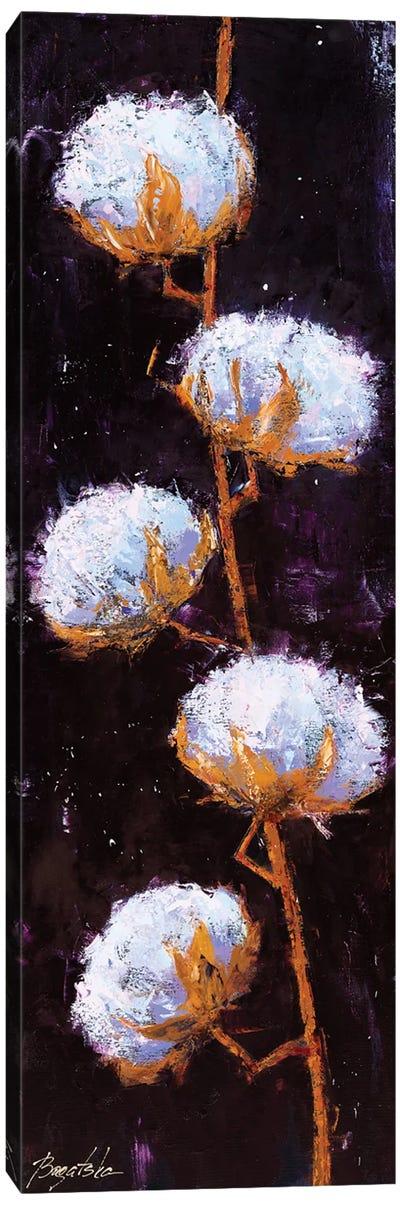 Cotton Branch Canvas Art Print