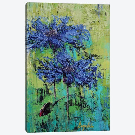 Cornflowers I Canvas Print #OBO20} by Olena Bogatska Canvas Art
