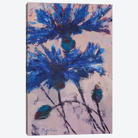 Cornflowers III Canvas Print #OBO22} by Olena Bogatska Canvas Wall Art