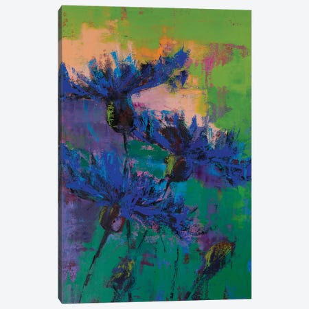 Cornflowers IV Canvas Print #OBO23} by Olena Bogatska Canvas Wall Art