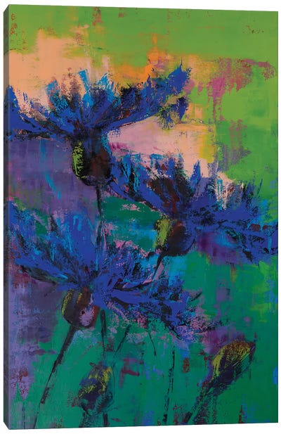 Cornflowers IV Canvas Art Print