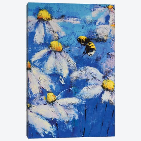 Daises Ii Canvas Print #OBO26} by Olena Bogatska Canvas Art Print