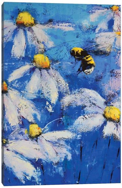 Daises Ii Canvas Art Print