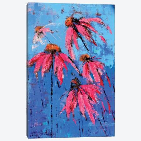 Echinacea Canvas Print #OBO27} by Olena Bogatska Canvas Print
