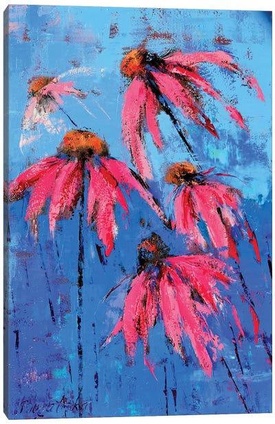 Echinacea Canvas Art Print