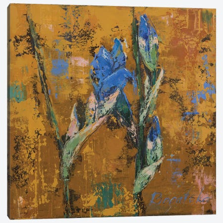 Iris Small II Canvas Print #OBO39} by Olena Bogatska Art Print