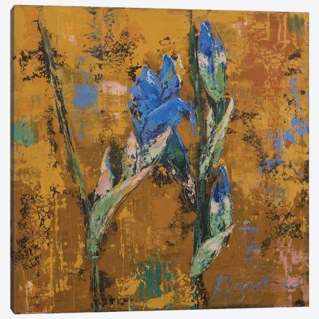 Iris Small II Canvas Print #OBO39} by Olena Bogatska Art Print