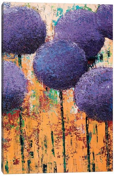Allium III Canvas Art Print