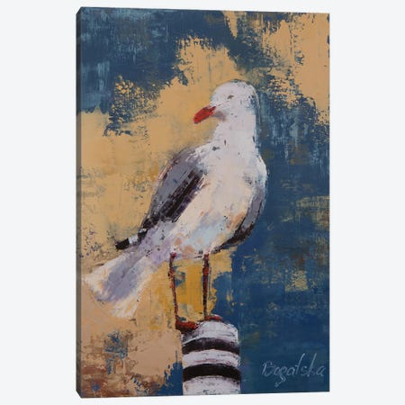 Seagull I Canvas Print #OBO66} by Olena Bogatska Canvas Art Print