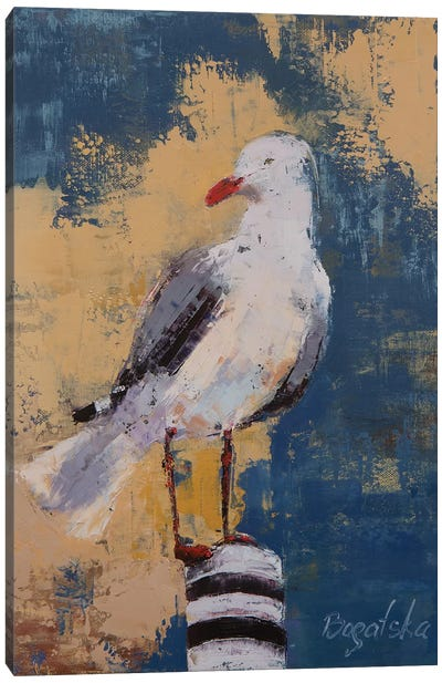 Seagull I Canvas Art Print