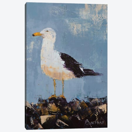 Seagull II Canvas Print #OBO67} by Olena Bogatska Canvas Art Print