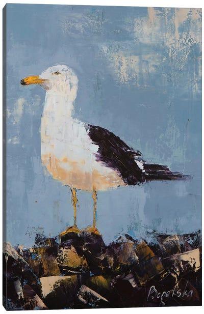 Seagull II Canvas Art Print