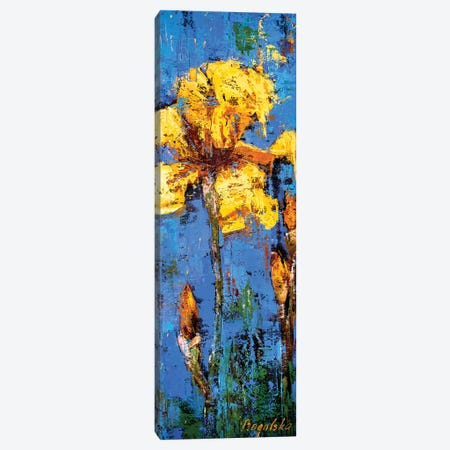 Yellow Iris Canvas Print #OBO78} by Olena Bogatska Canvas Print