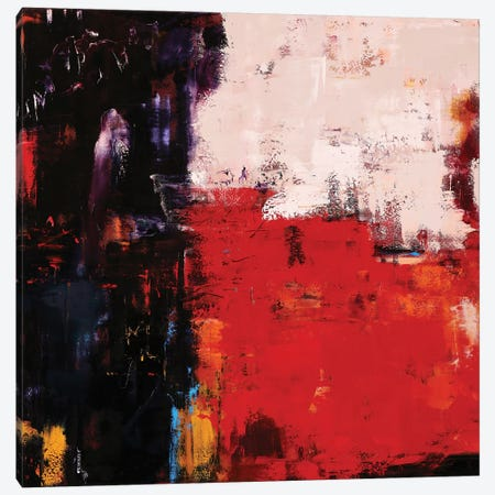Abstract VII Canvas Print #OBO85} by Olena Bogatska Canvas Print