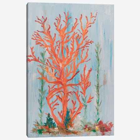 Painterly Coral II Canvas Print #OBR2} by Olivia Brewington Canvas Artwork