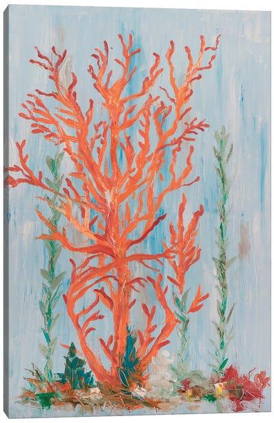 Painterly Coral II Canvas Art Print