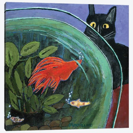 The Betta & the Pussycat Canvas Print #OCN126} by James O'Connell Canvas Art Print