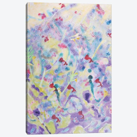 Field Of Wild Flowers Canvas Print #OCN23} by James O'Connell Canvas Art