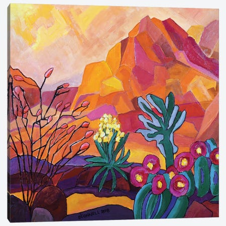Flowering California Desert Canvas Print #OCN26} by James O'Connell Art Print