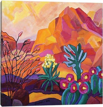 Flowering California Desert Canvas Art Print