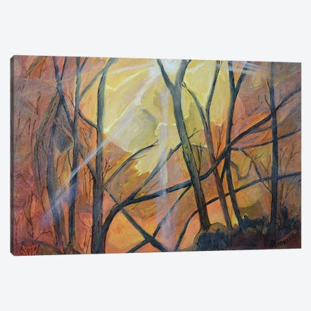 Autumn Sunrays Canvas Print #OCN2} by James O'Connell Canvas Artwork