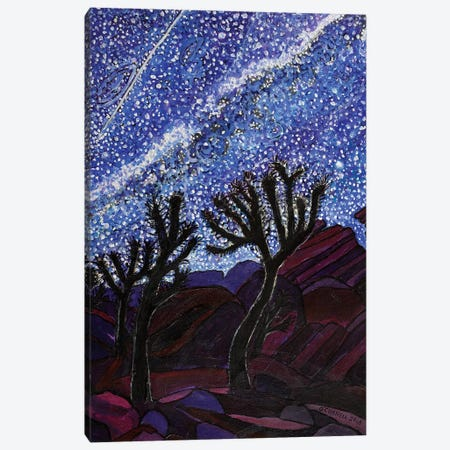 Joshua Tree On A Starry Night Canvas Print #OCN34} by James O'Connell Canvas Wall Art
