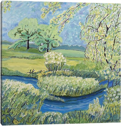 May Springs In Middleton Wisc Canvas Art Print