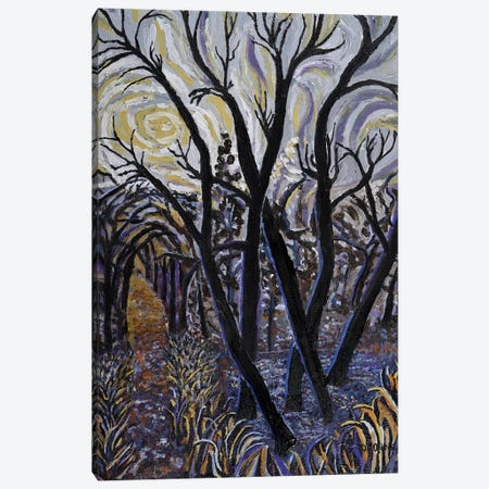 Black Willows In Fall Canvas Print #OCN6} by James O'Connell Art Print