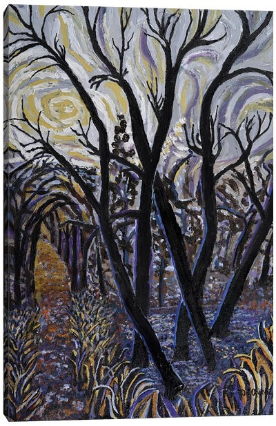 Black Willows In Fall Canvas Art Print