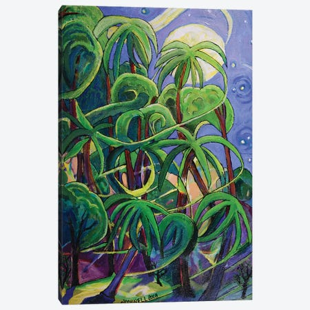 Tropical Moonlight III Canvas Print #OCN84} by James O'Connell Art Print